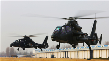 Attack helicopters land at parking apron