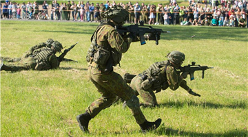 Lithuanians celebrate Public and Military Unity Day in Alytus