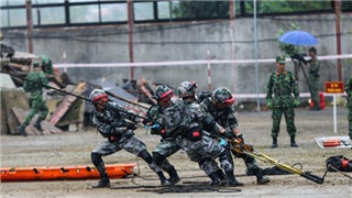 China-Vietnam militaries hold joint disaster relief drill in border areas