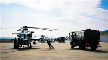 Attack helicopters receive power-on inspections