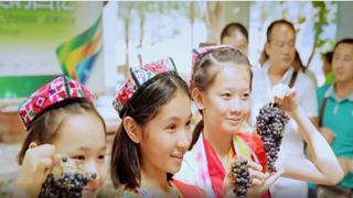 Total population of all ethnic groups in Xinjiang maintains growth